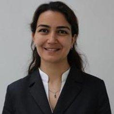 Dr. Cicek Cavdar